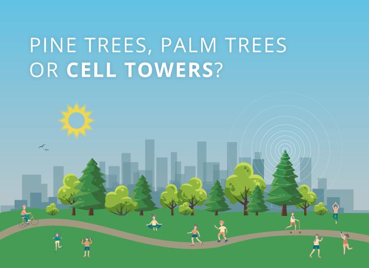 Pins, palmiers ou tours cellulaires?