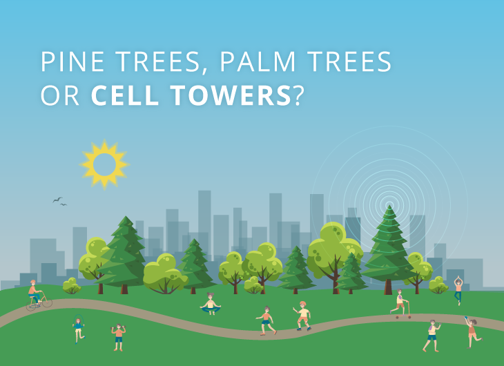 Pine Trees, Palm Trees or  Cell Towers?